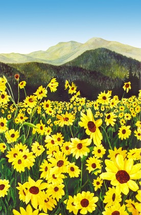 Yellow flower field douglas castleman landscape art yellow flower field mightylinksfo Choice Image